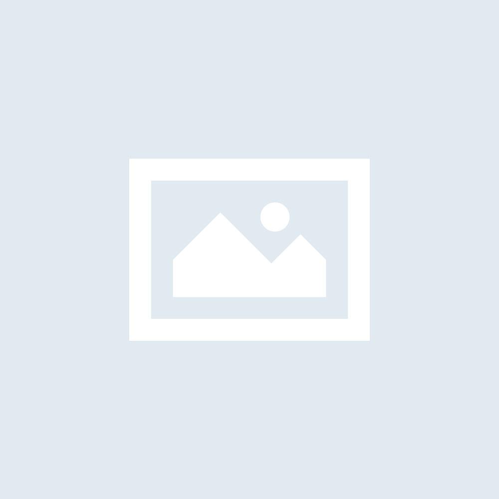 TechSil 25 (S25) - 1kg